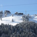 Pine Marten Lodge - Catered Ski Chalet in Central Morzine