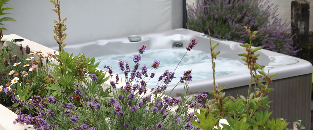 The garden and hot tub